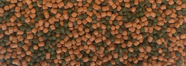 Dajana Cichlid pellets, krmivo (granule) pro ryby 1 000ml, 3 mm